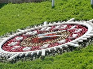 Квітковий годинник у Чернівцях. ФОТО