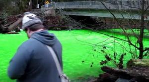 Река Голдстрим стала… зеленой! Видео